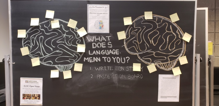 What does language mean to you?